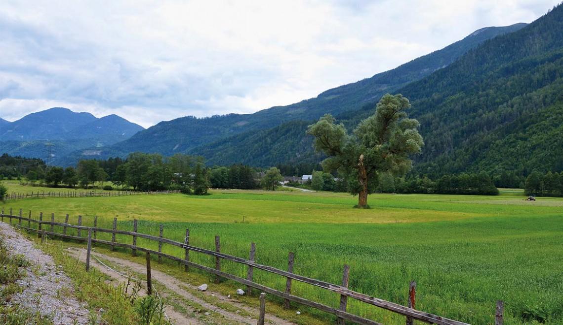 Enjoy-Osttirol: Drauradweg
