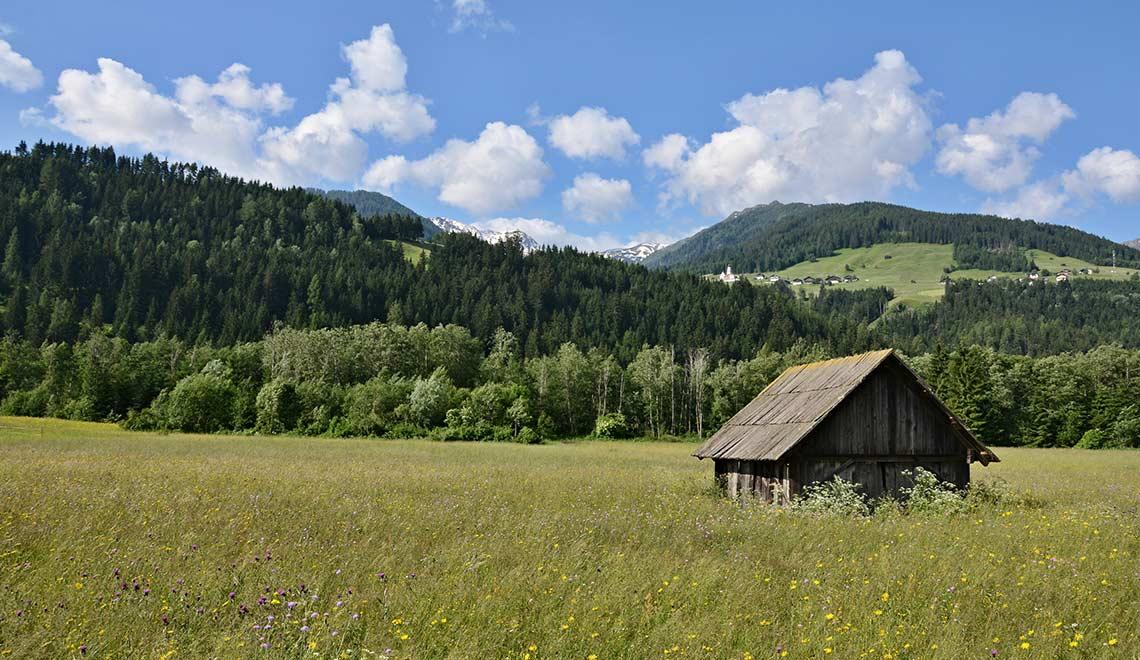 Der Naturschaupfad Tassenbach: Kinder brauchen Natur!