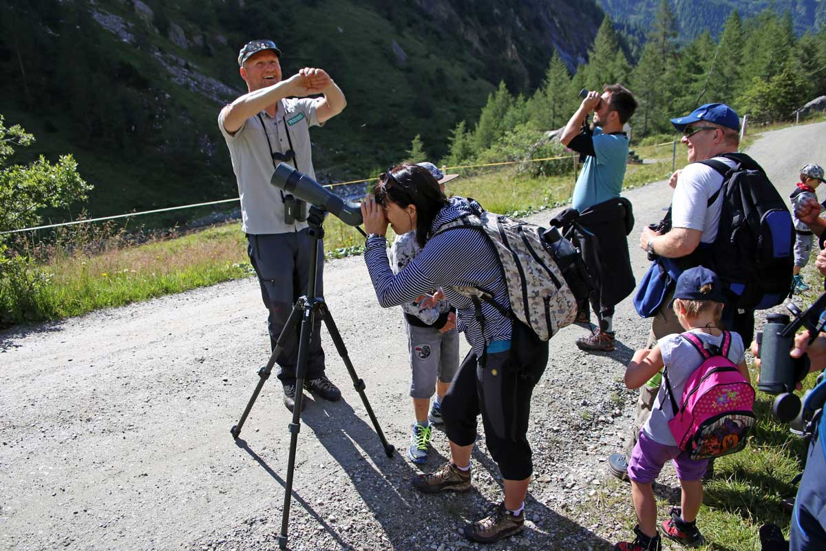 Enjoy-osttirol: Wildtierbeobachtung