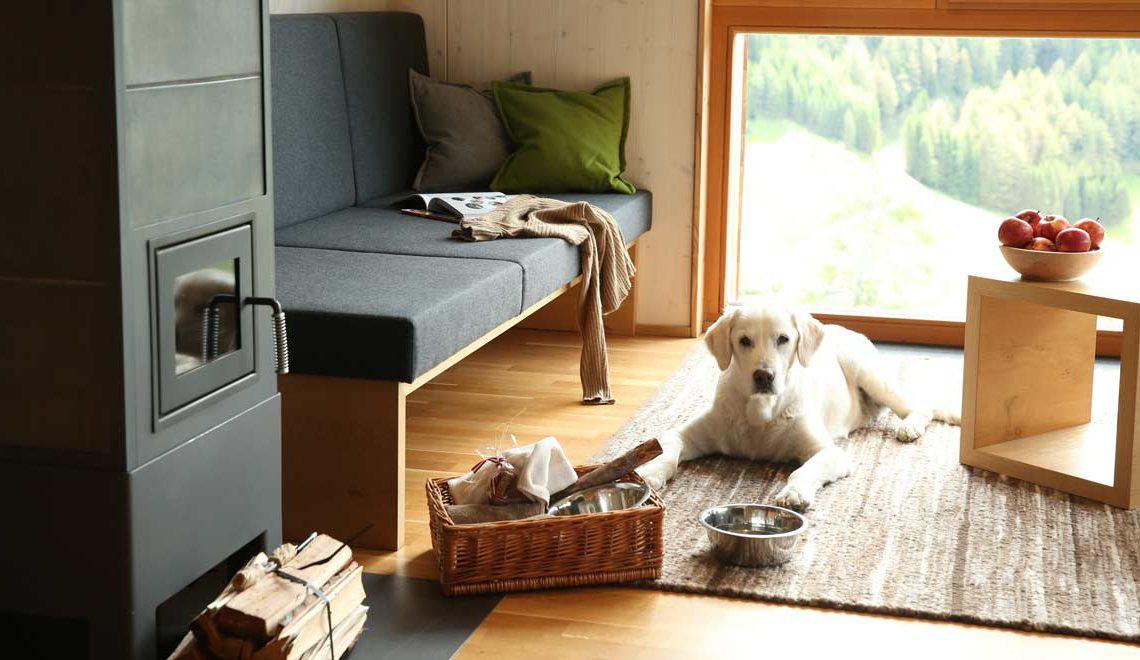 Enjoy Osttirol: Urlaub mit Hund